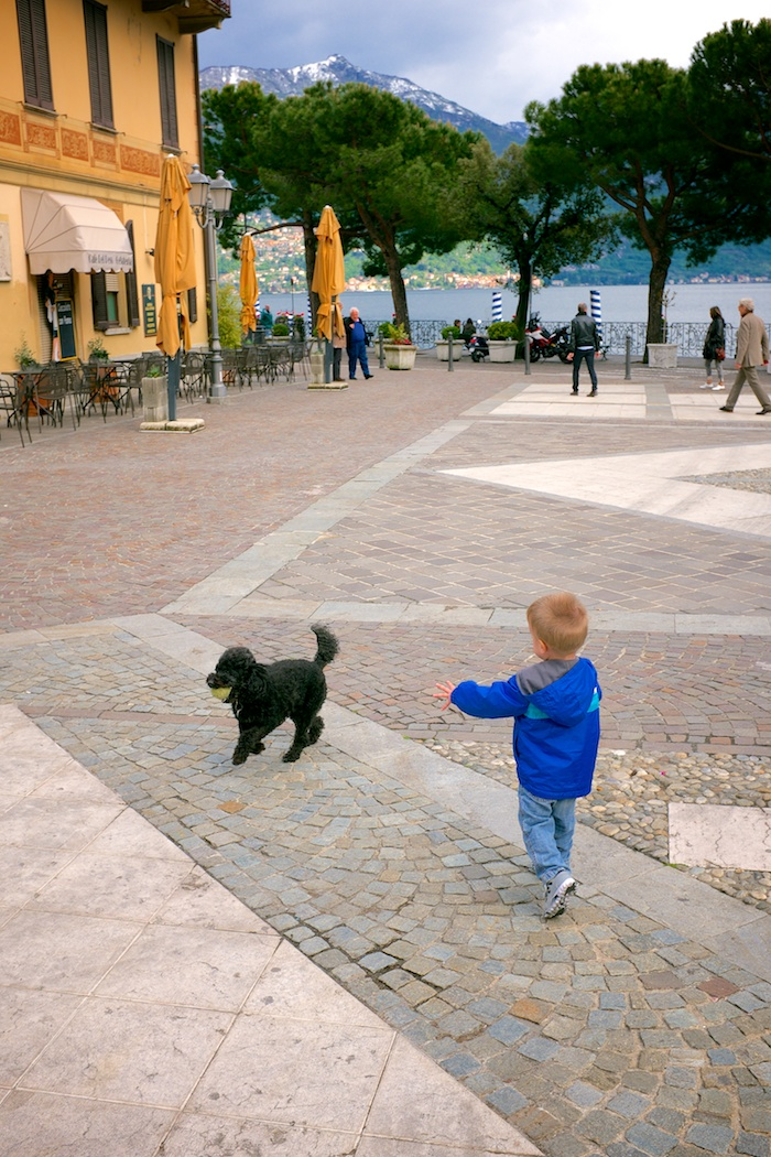Liam playing with a dog in the piazza